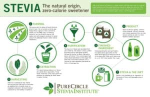 Stevia infographic
